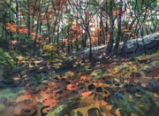 Fall Color Painting Posters - Autumn Woodlands Poster by Donald Maier