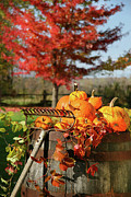 Jack O Lantern Photos - Autumns colorful harvest  by Sandra Cunningham
