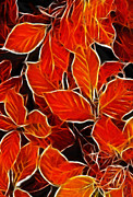 Red Leaves Pastels Acrylic Prints - Autums blood Acrylic Print by Stefan Kuhn