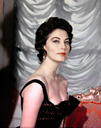 1950s Portraits Photos - Ava Gardner, 1950s by Everett