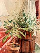Potted Plants Prints - Avacado and Spider Plant Print by Donald Maier