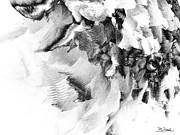 Barbara Drake - Avalanche