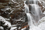 Tourists Attraction Photo Prints - Avalanche Falls - White Mountains NH Print by Erin Paul Donovan