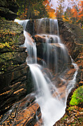 New England Fall Foliage Prints - Avalanche Falls - Franconia Notch Print by Thomas Schoeller