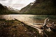 Mike McMurray - Avalanche Lake 