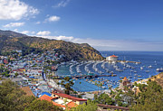 Catalina Prints - Avalon Print by Eddie Yerkish