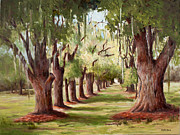 Glenda Cason - Avenue Of Oaks IV
