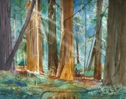 Avenue Of The Giants Prints - Avenue of the Giants Print by John Norman Stewart