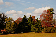 Avery Photos - Avery Hill Park Autumn by Dawn OConnor