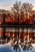 Metro Park Metal Prints - Awakening Metal Print by James Marvin Phelps