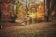 Pond Greeting Cards Digital Art - Awesome Autumn by Mary Timman