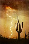 Arizona Lightning Posters - AZ Saguaro Lightning Storm V Poster by James Bo Insogna