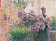 Azaleas Framed Prints - Azalea Framed Print by Carl Larsson