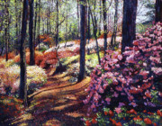 Pathways Painting Framed Prints - Azalea Forest Framed Print by David Lloyd Glover