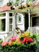 Steps Prints - Azaleas by Porch With Wicker Chair Print by Susan Savad