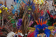 Individuals Photo Posters - Aztec Feather Dancers - Mexico Poster by Craig Lovell