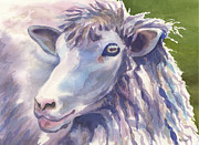 Lamb Originals - Baaaa by Marsha Elliott