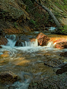Water Photographs Prints - Babbling Brook Print by Tim Reaves