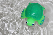 Baby Turtle Posters - Baby Bath Toy In Water Ripples Poster by Tracie Kaska