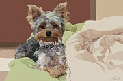 Terriers Framed Prints - Baby Bedhead Framed Print by Kris Hackleman