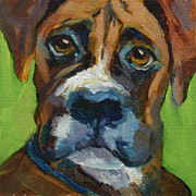 Boxer Painting Framed Prints - Baby Boxer Framed Print by Cris Weatherby
