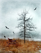 Wintry Photo Posters - Baby Buggy by Tree with Nest and Birds Poster by Jill Battaglia