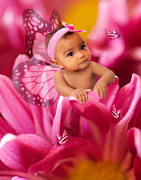 Photography By Mimi Prints - Baby Butterfly Kisses Print by MiMi  Photography