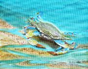 Sealife And Beaches - Baby Crab by Pauline Ross