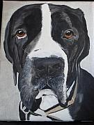Mastiff Dog Paintings - Baby Face by Robin England