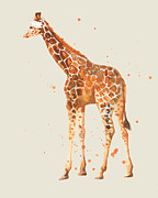 Zoo Animals Paintings - Baby Giraffe on Ecru by Alison Fennell