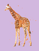 Zoo Animals Paintings - Baby Giraffe on Violet by Alison Fennell