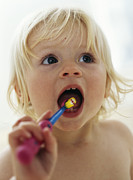 Brushing Prints - Baby Girl Brushing Teeth Print by Ian Boddy
