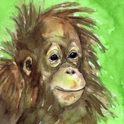 Watercolor And Ink Paintings - Baby orangutan wildlife painting by Cherilynn Wood