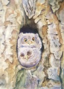 Baby Bird Originals - Baby Screech Owls by Patricia Pushaw