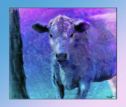 Steer Mixed Media Framed Prints - Baby Steer 3 Framed Print by John Breen