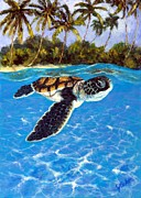 Baby Sea Turtle Paintings - Baby turtle by Jennifer Belote