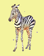 African Art Painting Posters - Baby Zebra on Lemon Poster by Alison Fennell