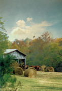 Tennessee Hay Bales Prints - Back At The Barn Again Print by Jan Amiss Photography