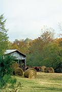 Tennessee Hay Bales Metal Prints - Back At The Barn Metal Print by Jan Amiss Photography