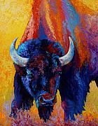 Bull Posters - Back Off - Bison Poster by Marion Rose