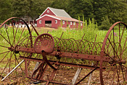 Connecticut Landscape Metal Prints - Back on the Farm Metal Print by Karol  Livote