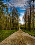 Gravel Road Photos - Back Road by Jamie Umlauf