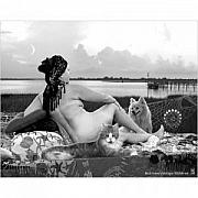 Odalisque Photos - Back Shore Odalisque by Nancy C Toothman