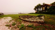 Harkers Island Photos - Back To The Earth by Casey Bingham