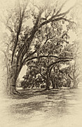 Evergreen Plantation Prints - Back to the Future antique sepia Print by Steve Harrington