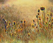 Field Pastels Prints - Backlit Thistle Print by Frances Marino