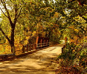 Backroad Prints - Backroads River Bridge Print by Robert Frederick