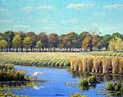 Waterfowl Paintings - Backwater Fishing by Rick Hansen