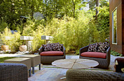 Landscaped Prints - Backyard Patio Area Print by Inti St. Clair