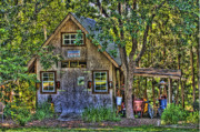 Shed Photo Prints - Backyard Shed Print by Andrew Armstrong  -  Orange Room Images